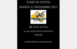 Stage départemental Jujitsu